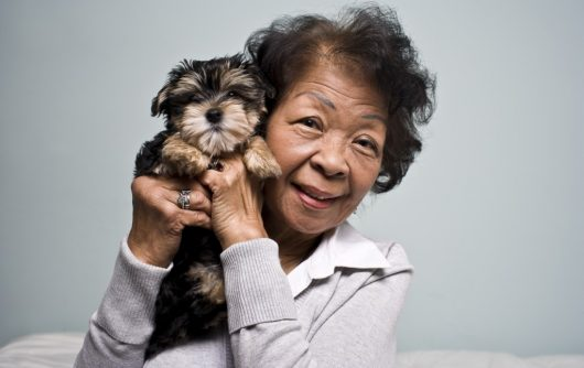 Pets and seniors make a good match