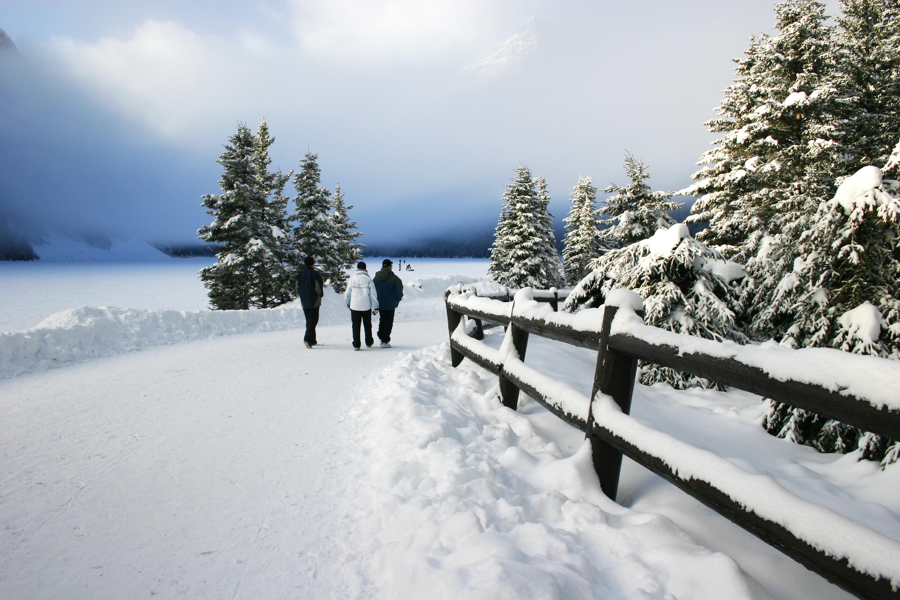 trois personnes marchant dans le parc en hiver