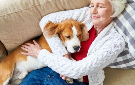 La sieste : peut-on vraiment abuser d'une bonne chose?