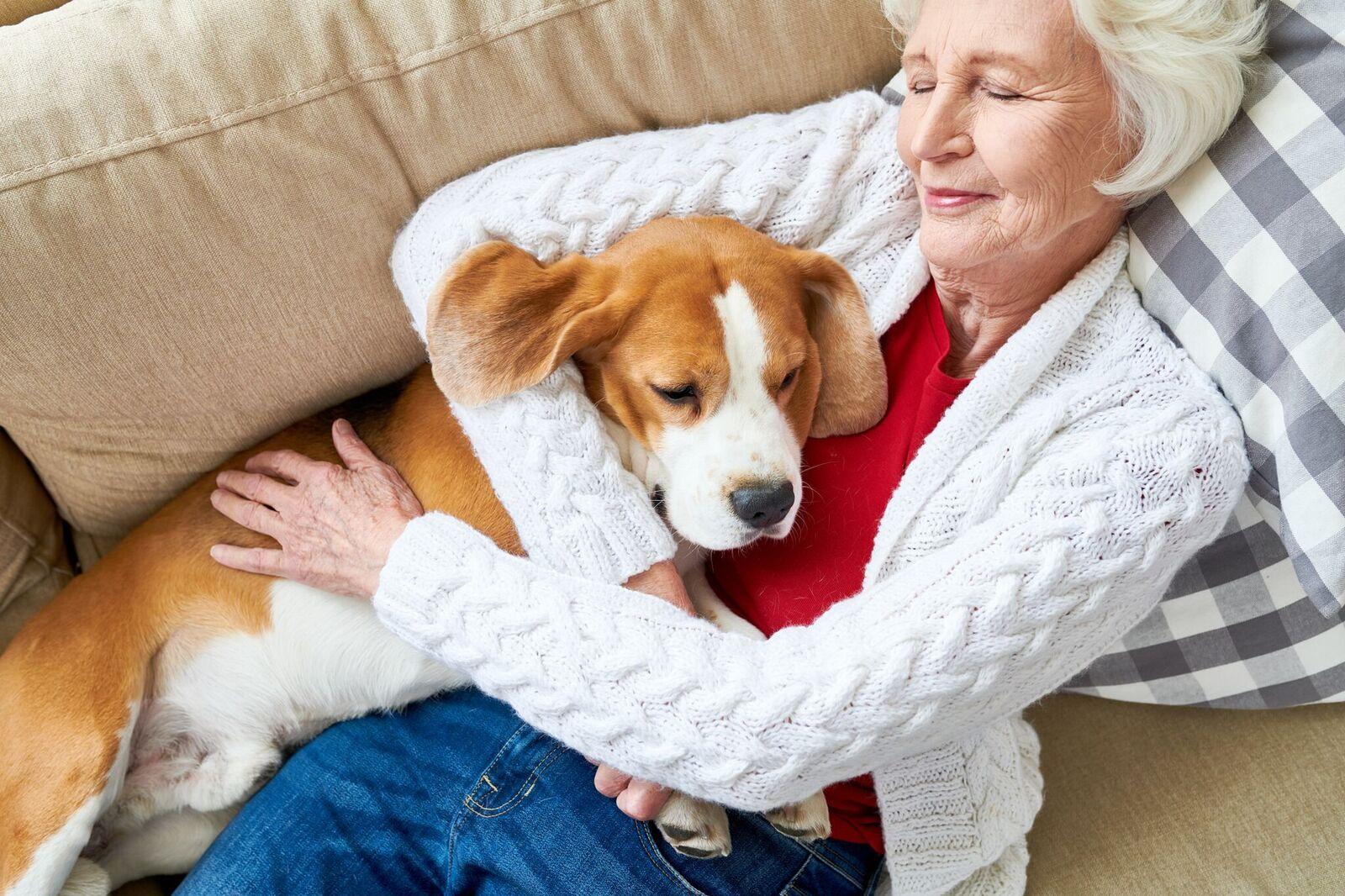 femme aînée, sieste, à, chien