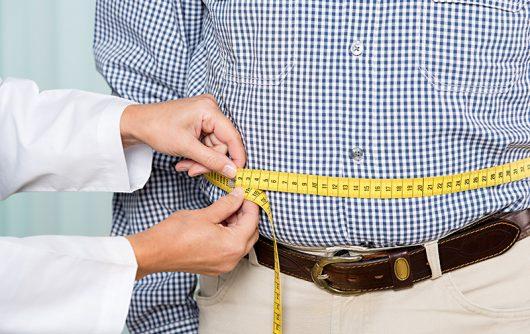 Understanding Obesity