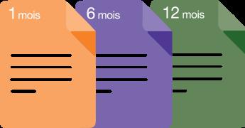Survey Icon – French
